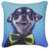 Blue Chihuahua with Green Bow Cushion